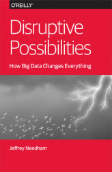 Okładka książki: Disruptive Possibilities: How Big Data Changes Everything