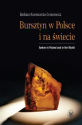 Okładka: Bursztyn w Polsce i na świecie. Amber in Poland and in the World